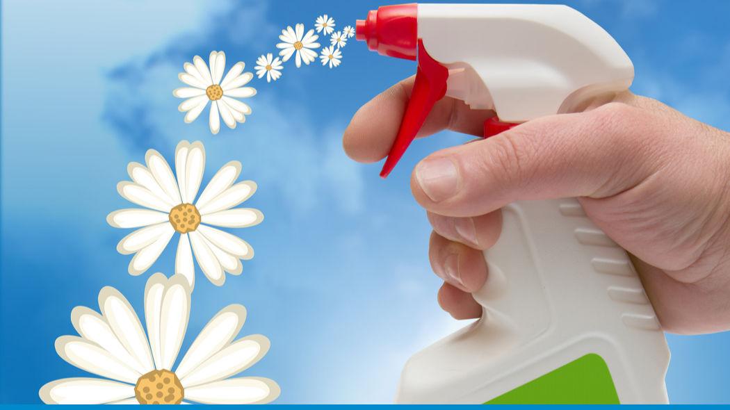 Umweltbewusst reinigen & gute Hygiene erhalten