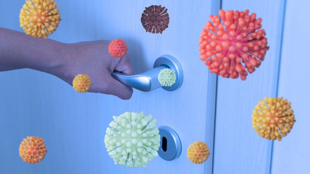 Virenverschleppung in der Wohnung vermeiden